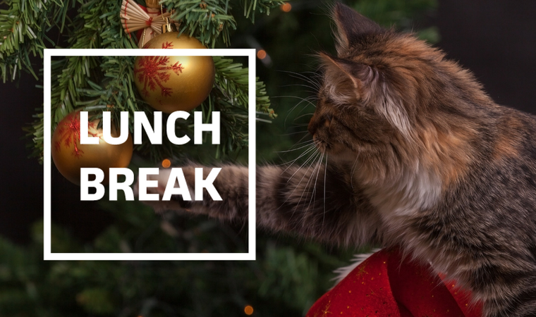 Holiday Messaging, Brand Reputation, AI, and More